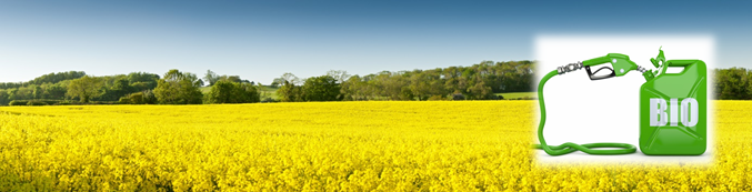 baner biopaliwa